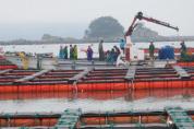전남도, 수산양식시설 현대화 253억 융자 지원